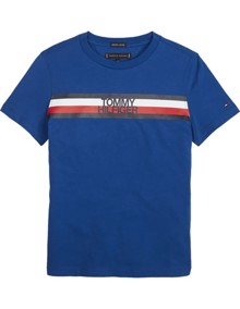 Tommy Hilfiger Essential Global Stripe T-shirt | Coaststore.dk